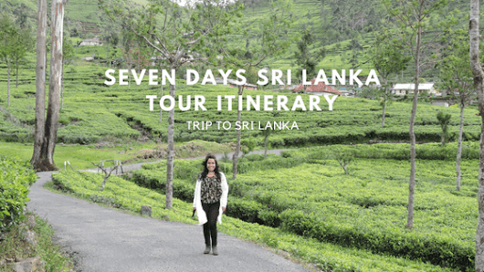 My Solo Trip To Sri Lanka (Seven Days Itinerary) | My Own Way To Travel