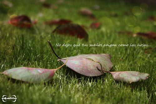 No dejes que tus sueños caigan como las hojas by Ekatiia