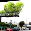 Urban Air Project, Converting Billboards into Bamboo Gardens