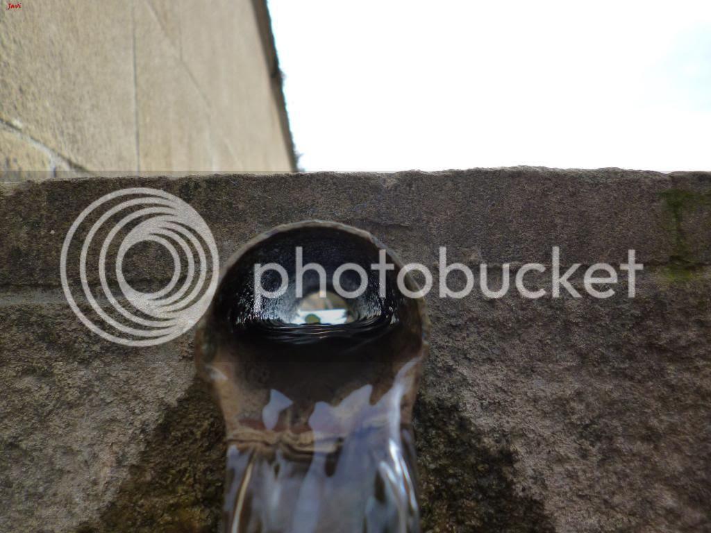 photo PENtildeAUNZUE-ALAIZ15-11-14202_zps222f442a.jpg