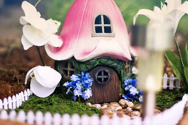 { Fairy Gardens }