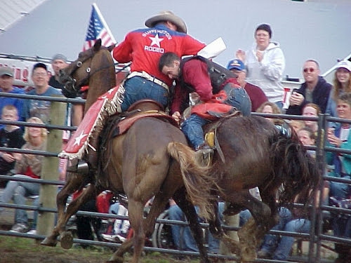 Rodeo pickup man helping bronc rider off his horse