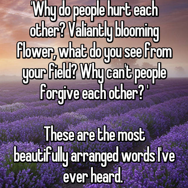 Why Do People Hurt Each Other Valiantly Blooming Flower What Do