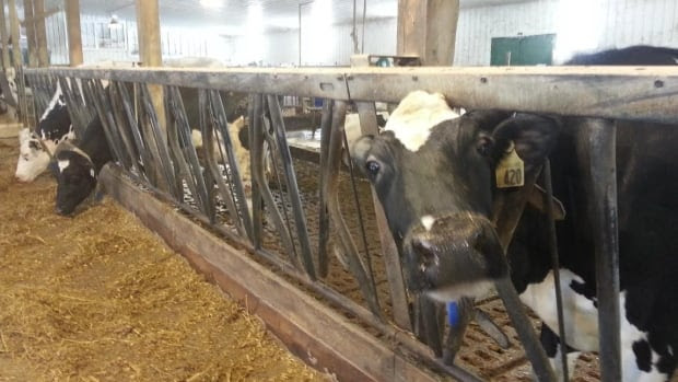 The Dairy Farmers of P.E.I. are concerned about the Trans-Pacific Partnership negotiations.