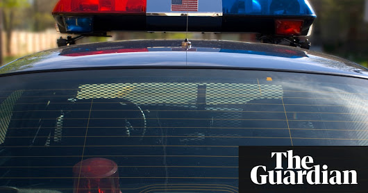Idaho: nine hurt in stabbing rampage at three-year-old girl's birthday party | US news | The Guardian