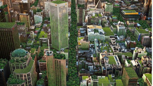 Greener cities the key to happier, healthier, stress-free lives