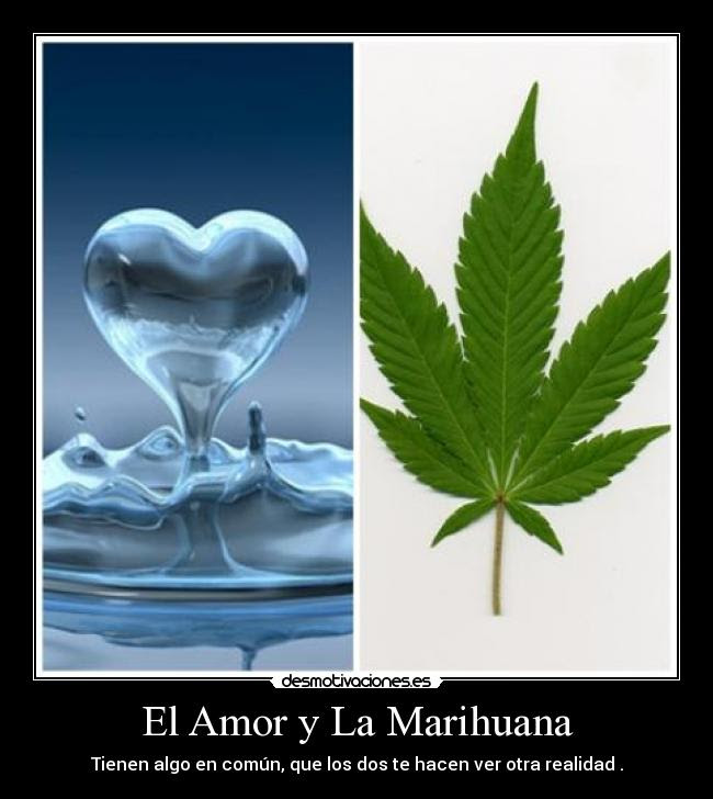El Amor Y La Marihuana Desmotivaciones