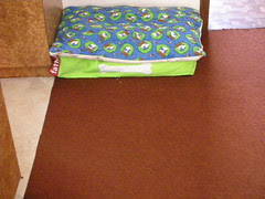 Fatboy dog bed (lime)