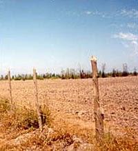 Brasil é país que mais concentra terras no mundo