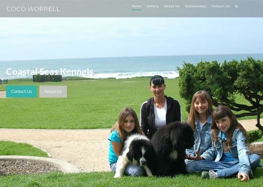 New Website Launch - Coastal Seas Kennels - Shoreline Web Marketing
