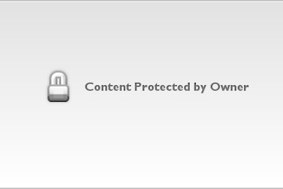 Hawaii | Palm Trees 1