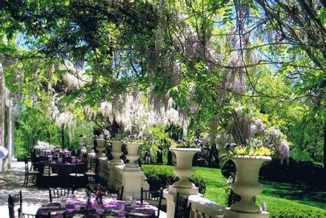 Wedding seating on the terrace under the wisteria canopy