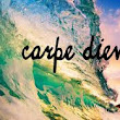Carpe the frikking diem