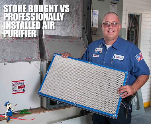 Air Purifiers: Comparing Professional and Store Bought