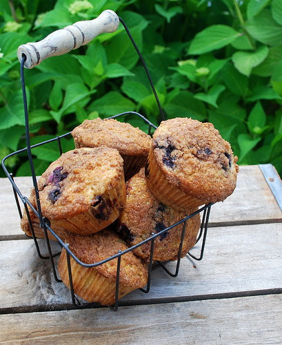 Blueberry Muffin FS