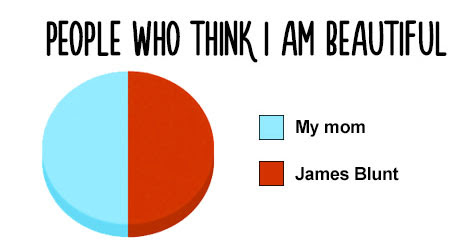 12+ Pie Charts which are Hilariously True