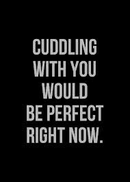 Cuddling With You Would Be Perfect Right Now Honesty Quote