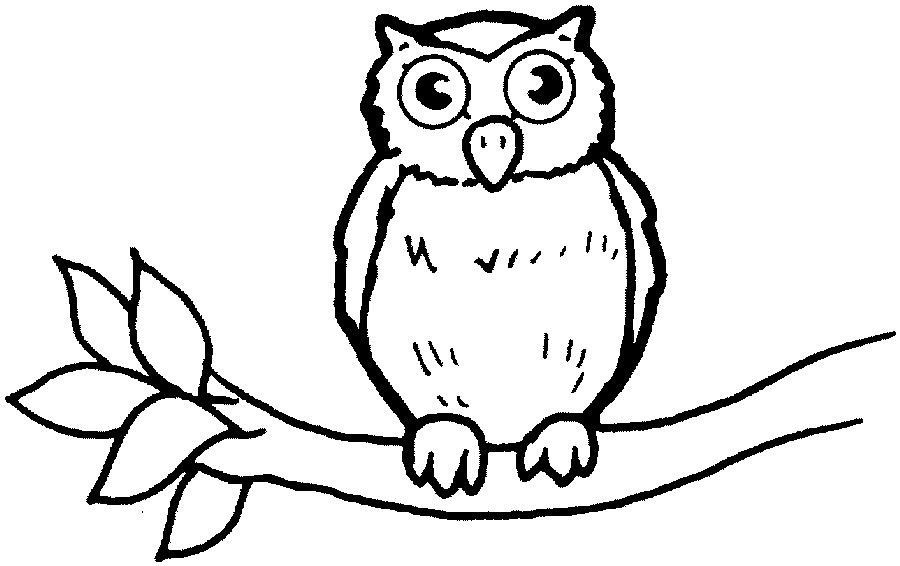 Free Outline Drawings Of Animals Download Free Clip Art Free Clip