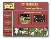 Of Riverside Basset Hound