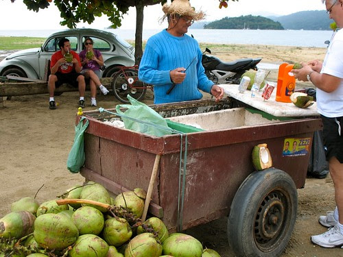 Coconut whacking in action
