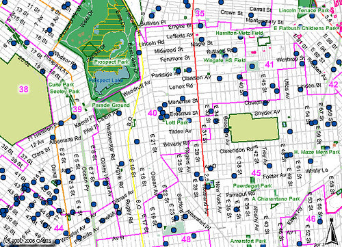 Brooklyn City Council District 40: Schools and Parks