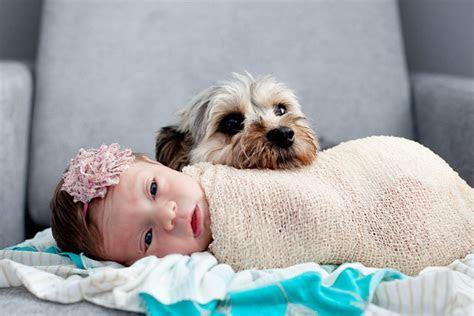 Newborns   Jen CYK Photography