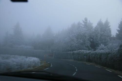 snowday (109)