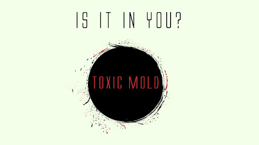Toxic Mold Syndrome | Is It In You? - My Labs For Life