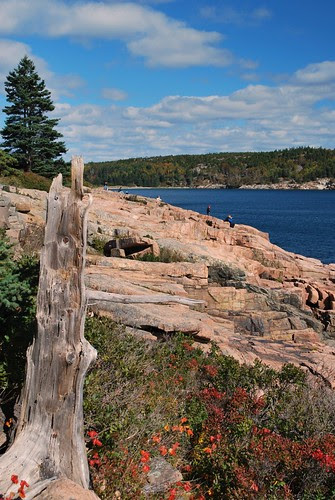 Cliffs at Acadia