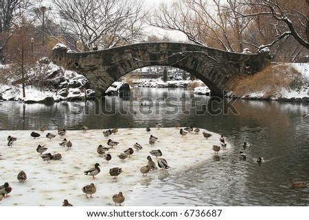 images of central park new york city. in Central Park, New York