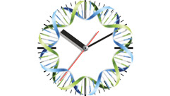 a clock with DNA