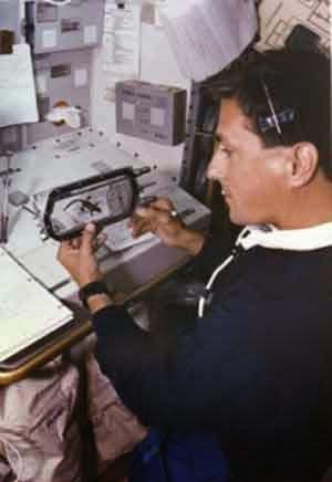 Sebelum Yuri Gagarin menciptakan sejarah dengan menjadi orang pertama di  luar angkasa pada  10 Hewan yang Pernah Menjelajahi Ruang Angkasa