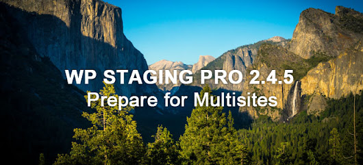 Release of WP Staging Pro 2.4.5