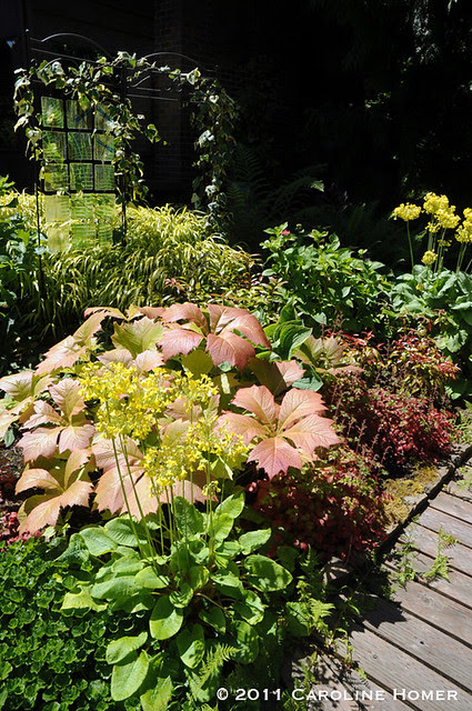 Glass garden art & foliage plants