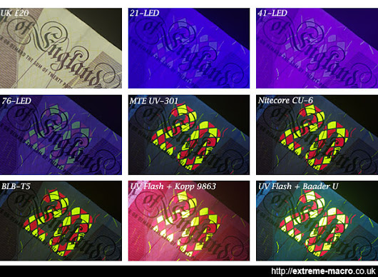 Torches and UV flash for ultra violet fluorescence macro photography