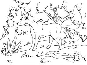 Colorear Zorro Dibujos De Animales Del Bosque Para Colorear