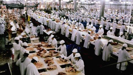 Risultati immagini per impatto della produzione di carne