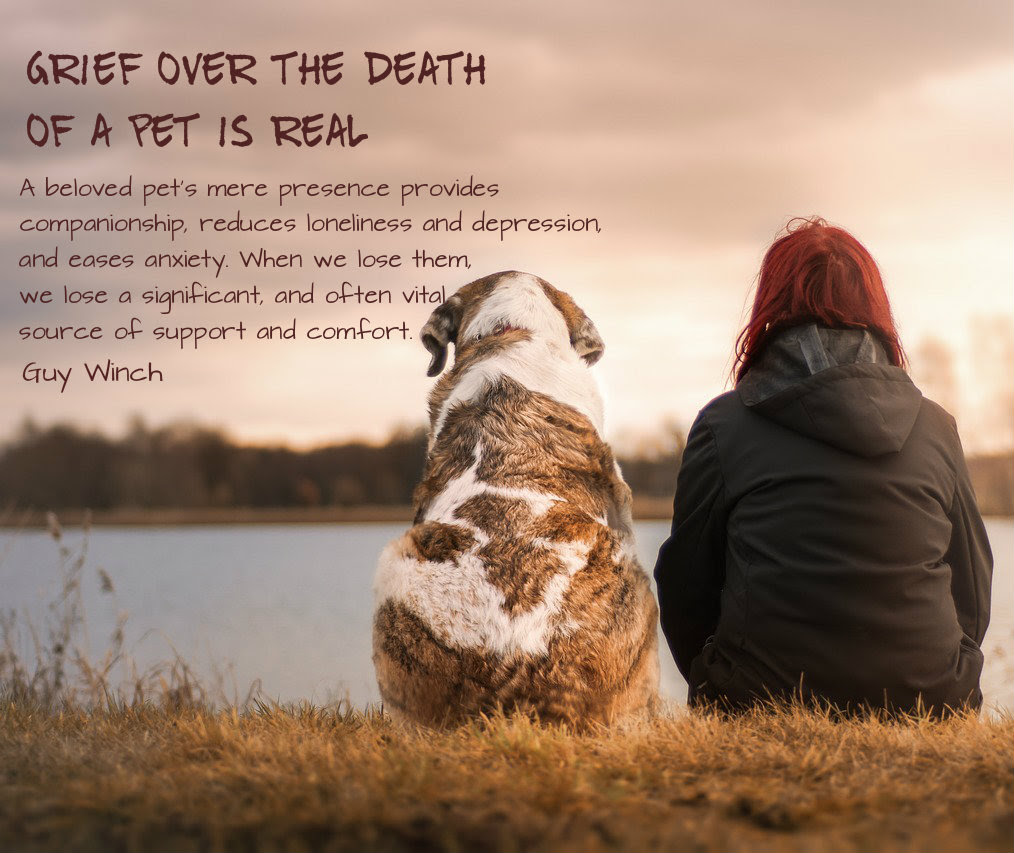 Grieving A Pet Conexus Counselling Winnipeg Manitoba