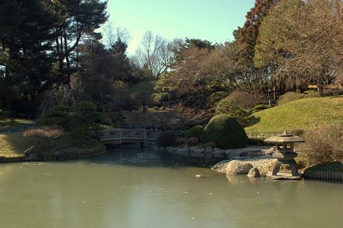 Frozen Pond, Japanese Garden, BBG