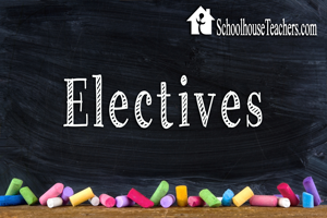 SchoolhouseTeachers Review 2016
