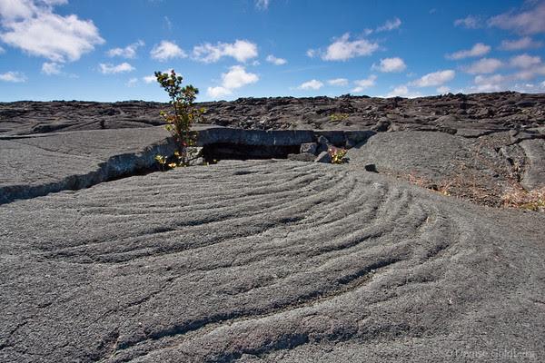along the trail to Pu'u Huluhulu, Hawaii Volcanoes National Park