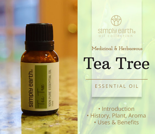Tea Tree Essential Oil - Uses & Benefits