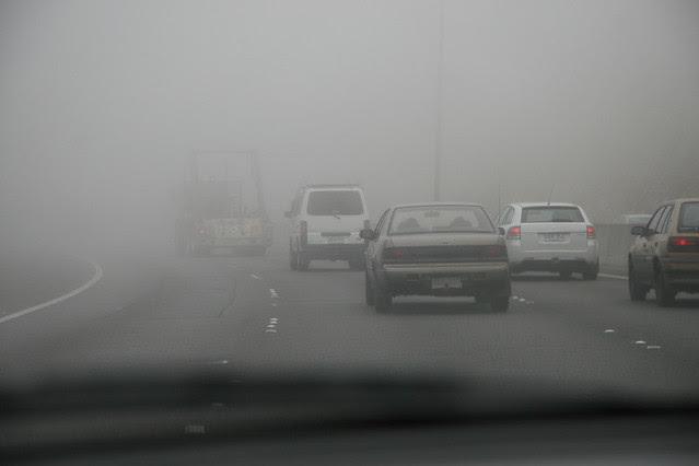 Fog in January