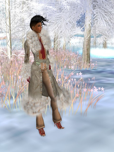 DreamFashion 2