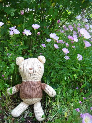 bear with sundrops