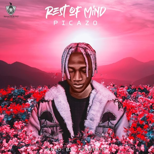 "[MUSIC]Picazo – ""Rest Of Mind"""