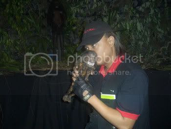Image from Seekers Malaysia, hosting by Photobucket