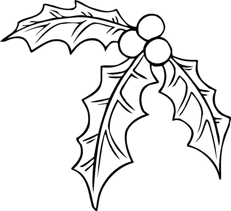 580 Coloring Pages Of Christmas Holly Pictures