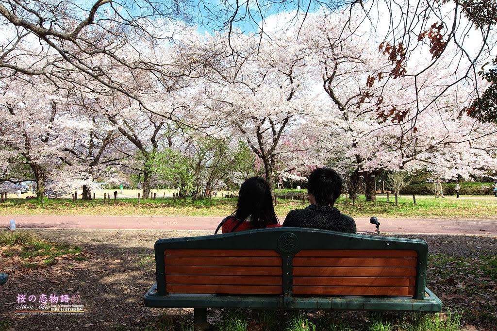 2014-04-04-14h21m06IMG_4713