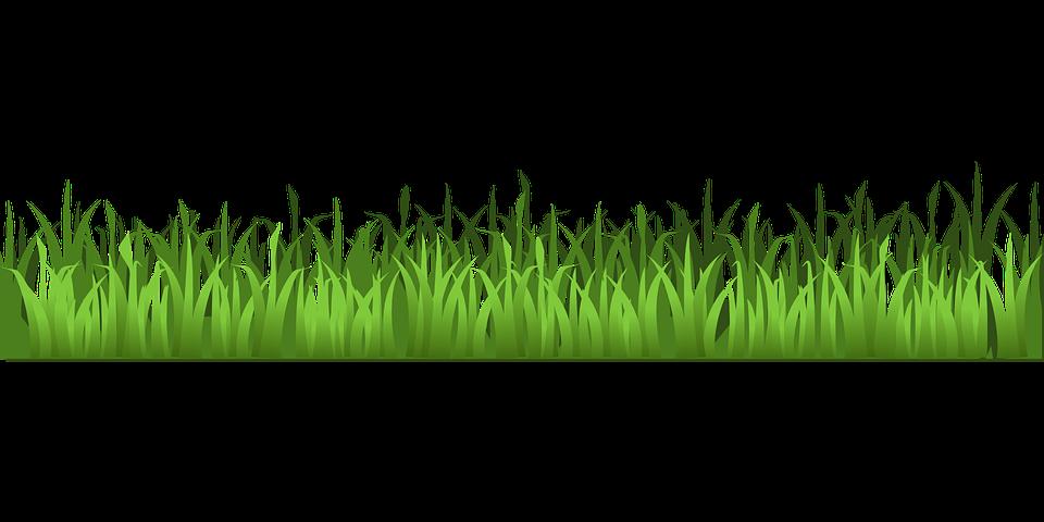 25 trend terbaru background rumput hijau animasi nico nickoo trend terbaru background rumput hijau